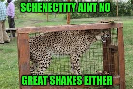 SCHENECTITY AINT NO GREAT SHAKES EITHER | made w/ Imgflip meme maker