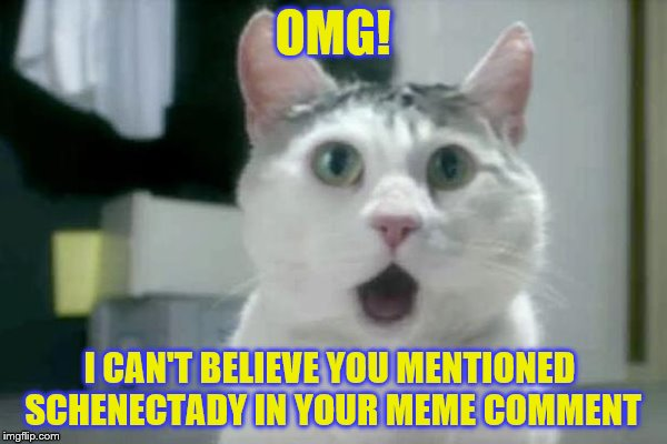 OMG! I CAN'T BELIEVE YOU MENTIONED SCHENECTADY IN YOUR MEME COMMENT | made w/ Imgflip meme maker