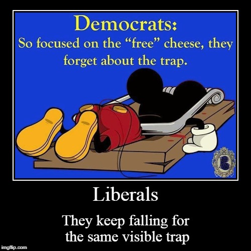Liberals | They keep falling for the same visible trap | image tagged in funny,demotivationals | made w/ Imgflip demotivational maker