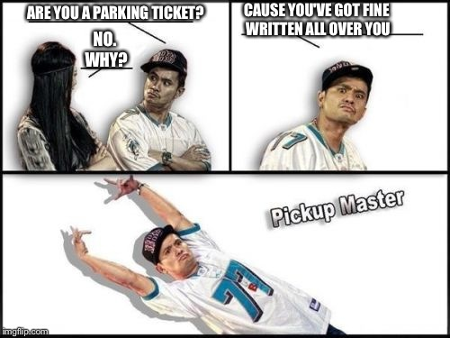 Pickup Master Meme | ARE YOU A PARKING TICKET? NO. WHY? CAUSE YOU'VE GOT FINE WRITTEN ALL OVER YOU | image tagged in memes,pickup master | made w/ Imgflip meme maker