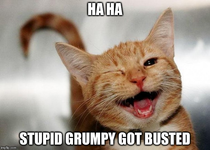 HA HA STUPID GRUMPY GOT BUSTED | made w/ Imgflip meme maker