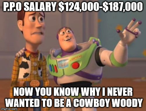 X, X Everywhere Meme | P.P.O SALARY $124,000-$187,000 NOW YOU KNOW WHY I NEVER WANTED TO BE A COWBOY WOODY | image tagged in memes,x x everywhere | made w/ Imgflip meme maker