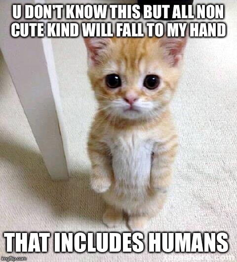 Cute Cat Meme | U DON'T KNOW THIS BUT ALL NON CUTE KIND WILL FALL TO MY HAND THAT INCLUDES HUMANS | image tagged in memes,cute cat | made w/ Imgflip meme maker