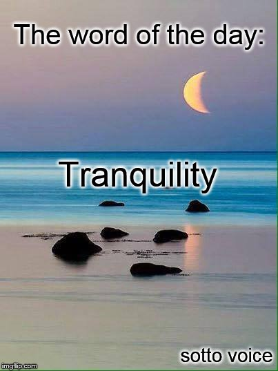 The word of the day: sotto voice Tranquility | image tagged in shore | made w/ Imgflip meme maker