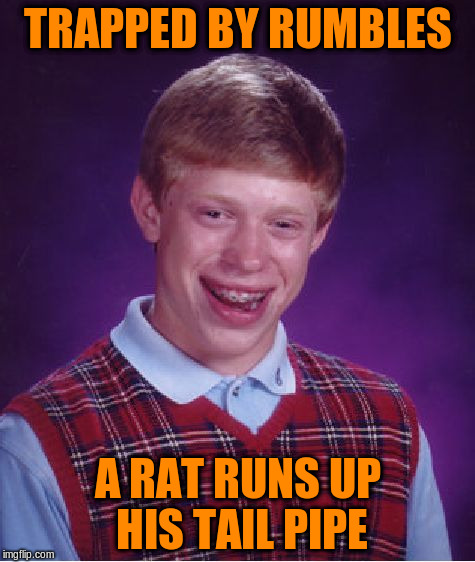 Bad Luck Brian Meme | TRAPPED BY RUMBLES A RAT RUNS UP HIS TAIL PIPE | image tagged in memes,bad luck brian | made w/ Imgflip meme maker