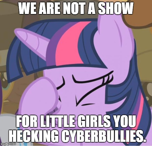 Anti-Cyberbullying | WE ARE NOT A SHOW FOR LITTLE GIRLS YOU HECKING CYBERBULLIES. | image tagged in mlp twilight sparkle facehoof | made w/ Imgflip meme maker
