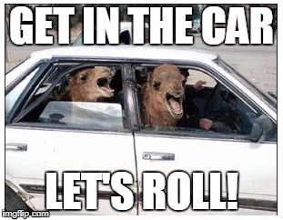 GET IN THE CAR LET'S ROLL! | image tagged in camel,driving,hump day | made w/ Imgflip meme maker