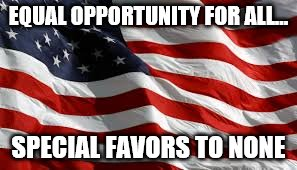 Truth | EQUAL OPPORTUNITY FOR ALL... SPECIAL FAVORS TO NONE | image tagged in american flag | made w/ Imgflip meme maker