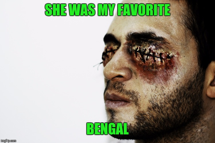 SHE WAS MY FAVORITE BENGAL | made w/ Imgflip meme maker