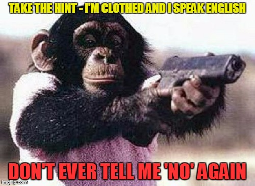 TAKE THE HINT - I'M CLOTHED AND I SPEAK ENGLISH DON'T EVER TELL ME 'NO' AGAIN | made w/ Imgflip meme maker