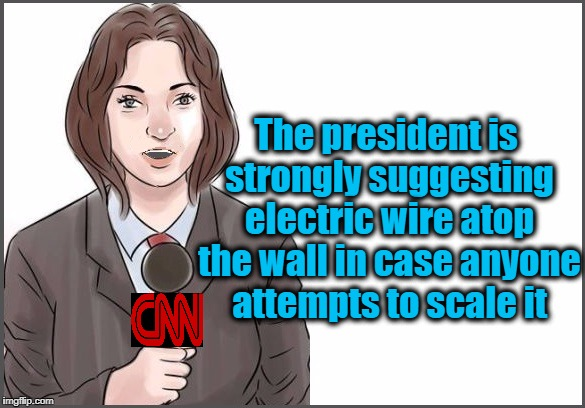 reporter | The president is strongly suggesting electric wire atop the wall in case anyone attempts to scale it | image tagged in reporter | made w/ Imgflip meme maker
