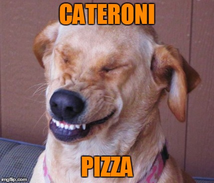 CATERONI PIZZA | made w/ Imgflip meme maker