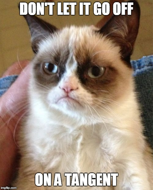 Grumpy Cat Meme | DON'T LET IT GO OFF ON A TANGENT | image tagged in memes,grumpy cat | made w/ Imgflip meme maker
