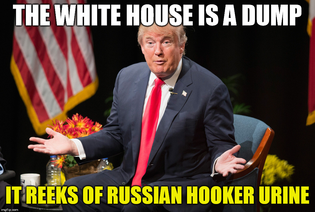 Trump is an idiot | THE WHITE HOUSE IS A DUMP IT REEKS OF RUSSIAN HOOKER URINE | image tagged in trump,donald trump is an idiot,fuck trump | made w/ Imgflip meme maker