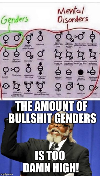 Genders vs. Mental Disorders | THE AMOUNT OF BULLSHIT GENDERS IS TOO DAMN HIGH! | image tagged in too damn high,gender | made w/ Imgflip meme maker