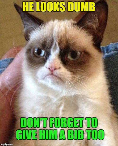 Grumpy Cat Meme | HE LOOKS DUMB DON'T FORGET TO GIVE HIM A BIB TOO | image tagged in memes,grumpy cat | made w/ Imgflip meme maker