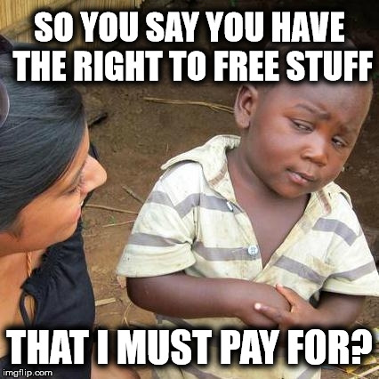 A right does not cost other people their money | SO YOU SAY YOU HAVE THE RIGHT TO FREE STUFF THAT I MUST PAY FOR? | image tagged in memes,third world skeptical kid,liberal logic | made w/ Imgflip meme maker