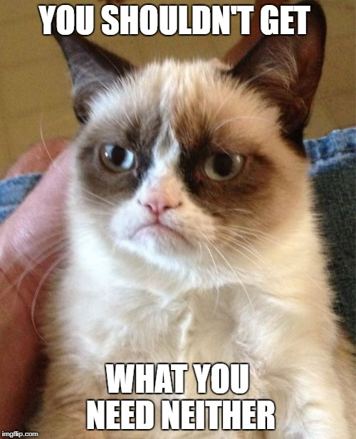 Grumpy Cat Meme | YOU SHOULDN'T GET WHAT YOU NEED NEITHER | image tagged in memes,grumpy cat | made w/ Imgflip meme maker