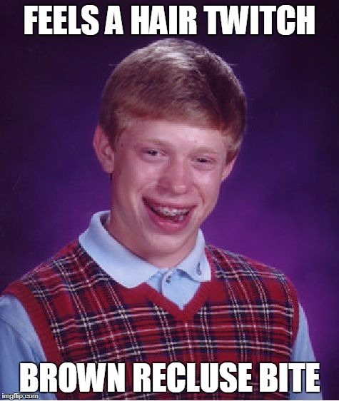 Bad Luck Brian Meme | FEELS A HAIR TWITCH BROWN RECLUSE BITE | image tagged in memes,bad luck brian | made w/ Imgflip meme maker