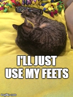 Remote Control Cat | I'LL JUST USE MY FEETS | image tagged in sleepy cat | made w/ Imgflip meme maker