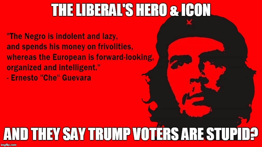 Liberal Idiocy & Hypocrisy | THE LIBERAL'S HERO & ICON AND THEY SAY TRUMP VOTERS ARE STUPID? | image tagged in liberal hypocrisy | made w/ Imgflip meme maker
