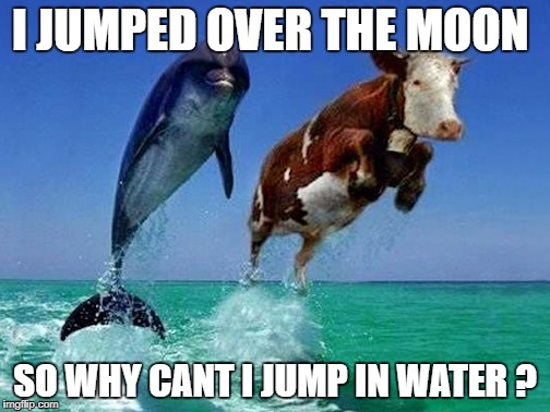 I JUMPED OVER THE MOON SO WHY CANT I JUMP IN WATER ? | image tagged in memes | made w/ Imgflip meme maker