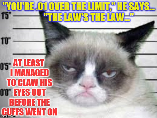 """YOU'RE .01 OVER THE LIMIT,"" HE SAYS...           ""THE LAW'S THE LAW..."" AT LEAST I MANAGED TO CLAW HIS EYES OUT BEFORE THE CUFFS WENT ON 
