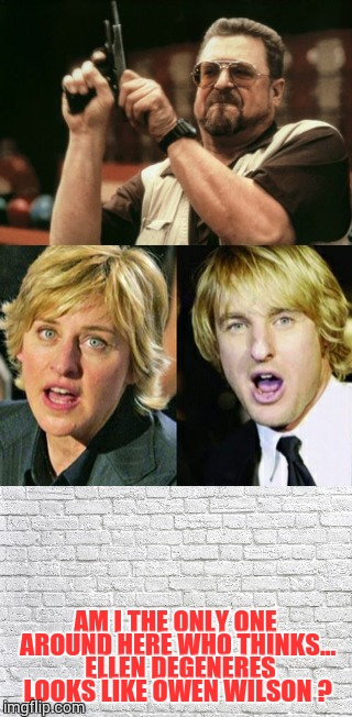 Am I The Only One Around Here | AM I THE ONLY ONE AROUND HERE WHO THINKS...  ELLEN DEGENERES LOOKS LIKE OWEN WILSON ? | image tagged in am i the only one around here,loyalsockatxhamster,john goodman,funny memes,memes,funny stuff | made w/ Imgflip meme maker