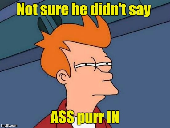 Futurama Fry Meme | Not sure he didn't say ASS purr IN | image tagged in memes,futurama fry | made w/ Imgflip meme maker