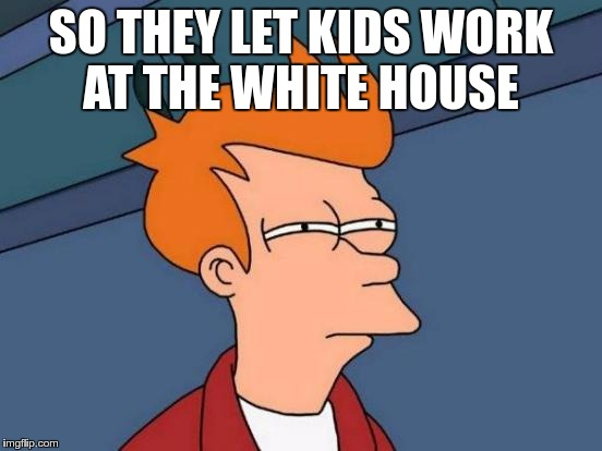 Futurama Fry Meme | SO THEY LET KIDS WORK AT THE WHITE HOUSE | image tagged in memes,futurama fry | made w/ Imgflip meme maker
