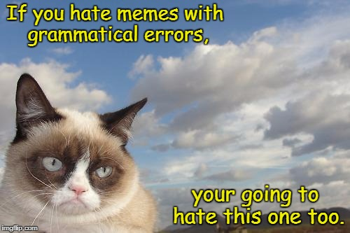 Grumpy Grammar  | If you hate memes with grammatical errors, your going to hate this one too. | image tagged in memes,grumpy cat sky,grumpy cat | made w/ Imgflip meme maker