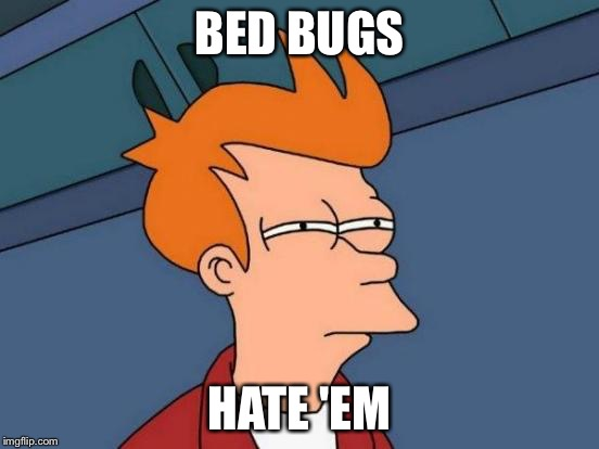 Futurama Fry Meme | BED BUGS HATE 'EM | image tagged in memes,futurama fry | made w/ Imgflip meme maker