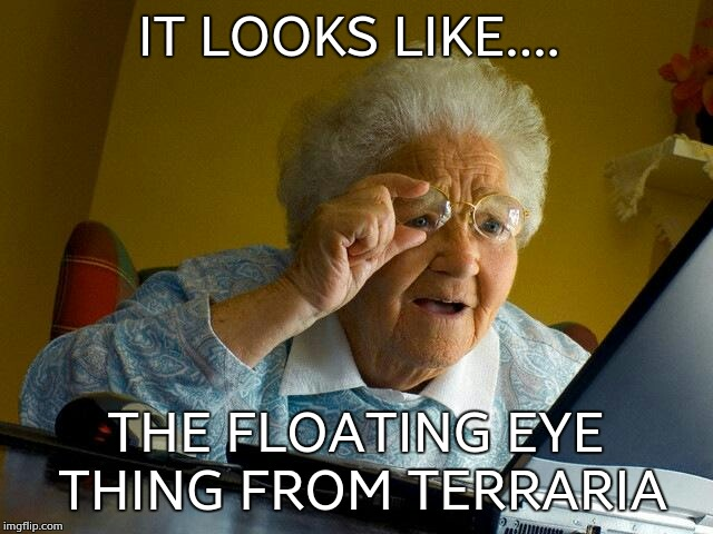 Grandma Finds The Internet Meme | IT LOOKS LIKE.... THE FLOATING EYE THING FROM TERRARIA | image tagged in memes,grandma finds the internet | made w/ Imgflip meme maker