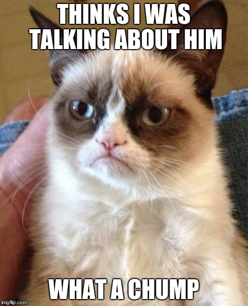 Grumpy Cat Meme | THINKS I WAS TALKING ABOUT HIM WHAT A CHUMP | image tagged in memes,grumpy cat | made w/ Imgflip meme maker