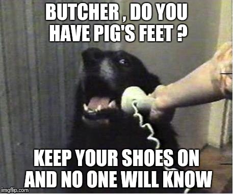 It's for you | BUTCHER , DO YOU HAVE PIG'S FEET ? KEEP YOUR SHOES ON AND NO ONE WILL KNOW | image tagged in it's for you | made w/ Imgflip meme maker