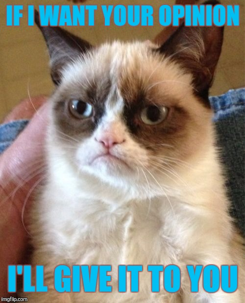 Grumpy Cat Meme | IF I WANT YOUR OPINION I'LL GIVE IT TO YOU | image tagged in memes,grumpy cat | made w/ Imgflip meme maker