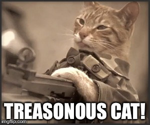 TREASONOUS CAT! | made w/ Imgflip meme maker