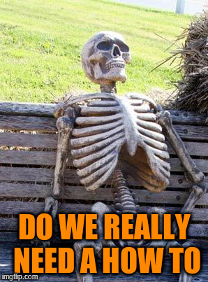 Waiting Skeleton Meme | DO WE REALLY NEED A HOW TO | image tagged in memes,waiting skeleton | made w/ Imgflip meme maker