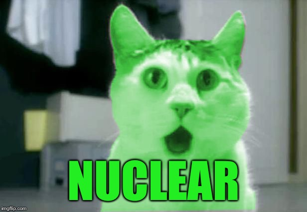 OMG RayCat | NUCLEAR | image tagged in omg raycat | made w/ Imgflip meme maker