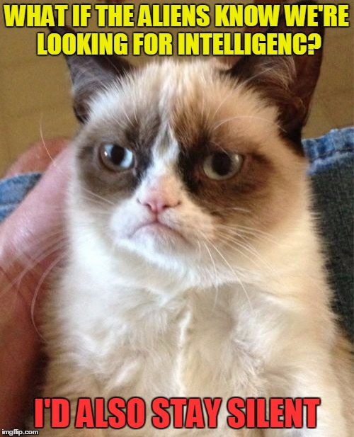 Grumpy Cat Meme | WHAT IF THE ALIENS KNOW WE'RE LOOKING FOR INTELLIGENC? I'D ALSO STAY SILENT | image tagged in memes,grumpy cat | made w/ Imgflip meme maker