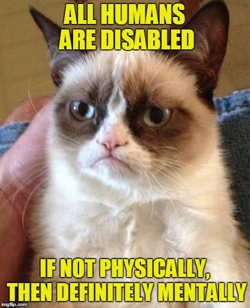 Grumpy Cat Meme | ALL HUMANS ARE DISABLED IF NOT PHYSICALLY, THEN DEFINITELY MENTALLY | image tagged in memes,grumpy cat | made w/ Imgflip meme maker
