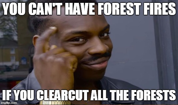 Problem solved | YOU CAN'T HAVE FOREST FIRES IF YOU CLEARCUT ALL THE FORESTS | image tagged in you can't if you don't | made w/ Imgflip meme maker