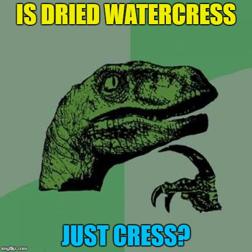 Is buffalo just a dried out water buffalo? :) | IS DRIED WATERCRESS JUST CRESS? | image tagged in memes,philosoraptor,watercress,cress,food,cooking | made w/ Imgflip meme maker
