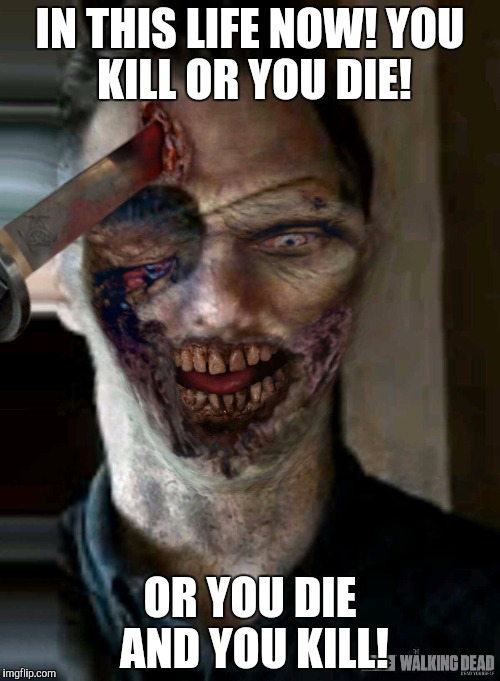 You kill or you die! | IN THIS LIFE NOW! YOU KILL OR YOU DIE! OR YOU DIE AND YOU KILL! | image tagged in the walking dead | made w/ Imgflip meme maker