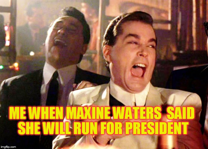 Good Fellas Hilarious Meme | ME WHEN MAXINE WATERS  SAID SHE WILL RUN FOR PRESIDENT | image tagged in memes,good fellas hilarious | made w/ Imgflip meme maker