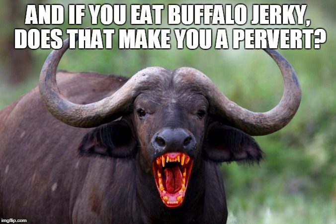 AND IF YOU EAT BUFFALO JERKY, DOES THAT MAKE YOU A PERVERT? | made w/ Imgflip meme maker