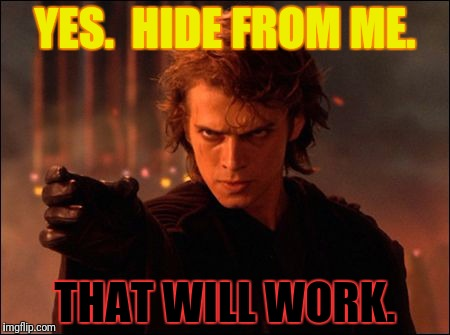 YES.  HIDE FROM ME. THAT WILL WORK. | made w/ Imgflip meme maker