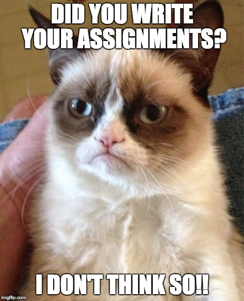 Grumpy Cat Meme | DID YOU WRITE YOUR ASSIGNMENTS? I DON'T THINK SO!! | image tagged in memes,grumpy cat | made w/ Imgflip meme maker