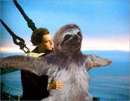 Titanic meme templates imgflip - Funny sloth pics ...