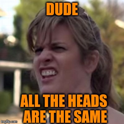 seriously? | DUDE ALL THE HEADS ARE THE SAME | image tagged in seriously | made w/ Imgflip meme maker